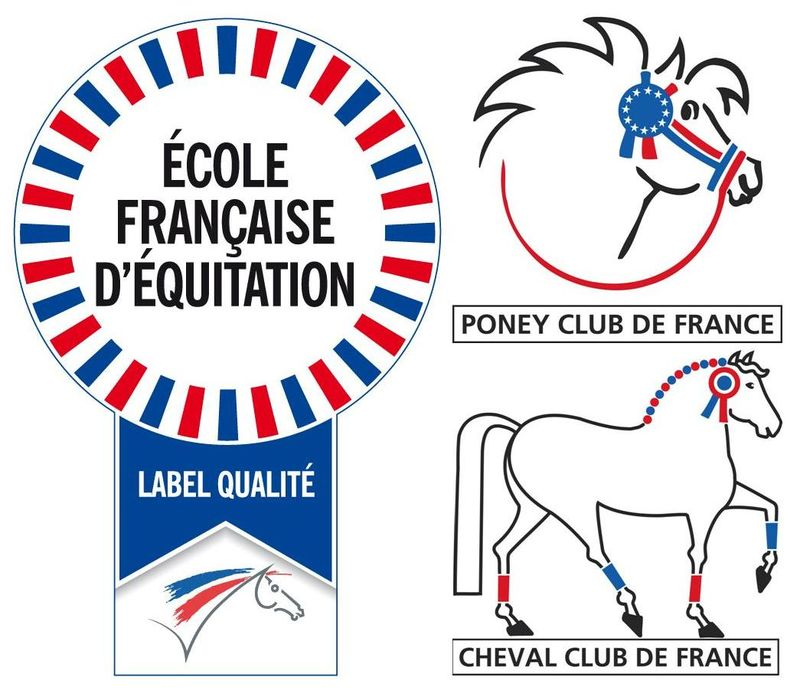 Logo EFE, PCF, CCF